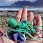 Bottiglie di plastica e non solo, ora su Whatsapp si possono segnalare i rifiuti in mare