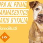 Farmaci per animali, ai nastri di partenza la campagna della Lav #CURIAMOLITUTTI