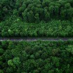 Ministero della Transizione Ecologica, a cosa serve